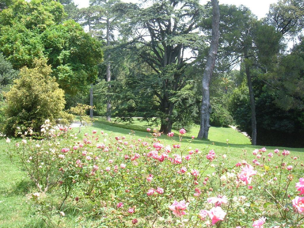 Caserta fotografie della reggia di caserta casertavecchia for Giardini inglesi