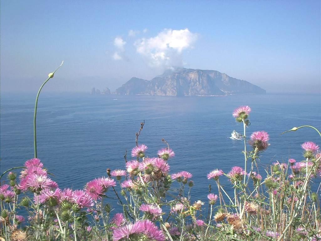 Foto paesaggi fotografie di paesaggi for Paesaggi per sfondi
